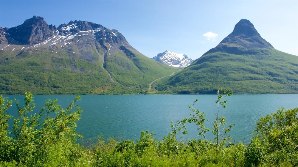 Cruises to Alaska